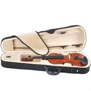 Violins | Great Musical Instruments